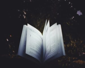 A book with open pages sitting amongst a dark forest background