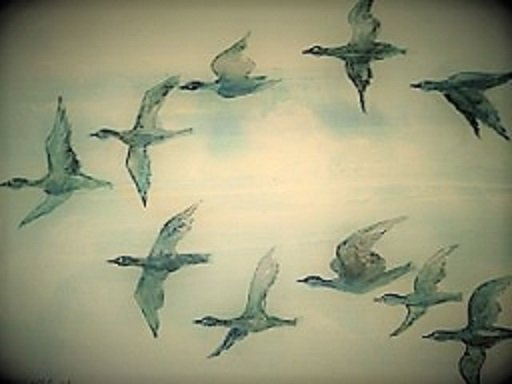 Geese flying across in a V pattern